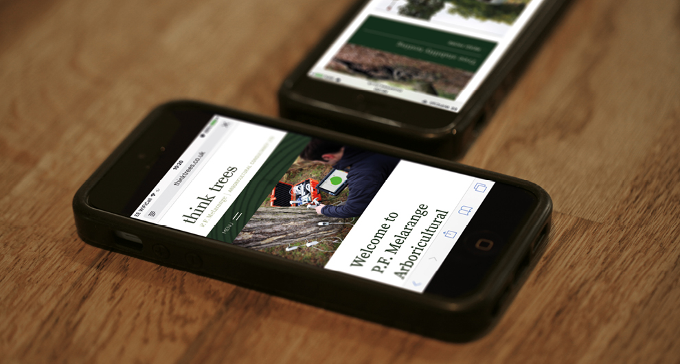 Website design and build for Thinktrees Ltd